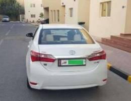 Toyota Corolla (White) for Sale Perfect & ...