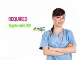 Nurse (QCHP License)
