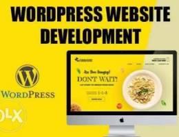 WE do wordpress website design and develop...